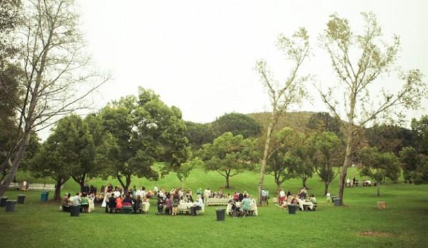 7piknik wesele plenerowe