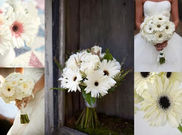 Białe gerbery w bukietach ślubnych / źródło: pinterest.com