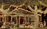 christmas-decorations-white-lights-house-polar-bears