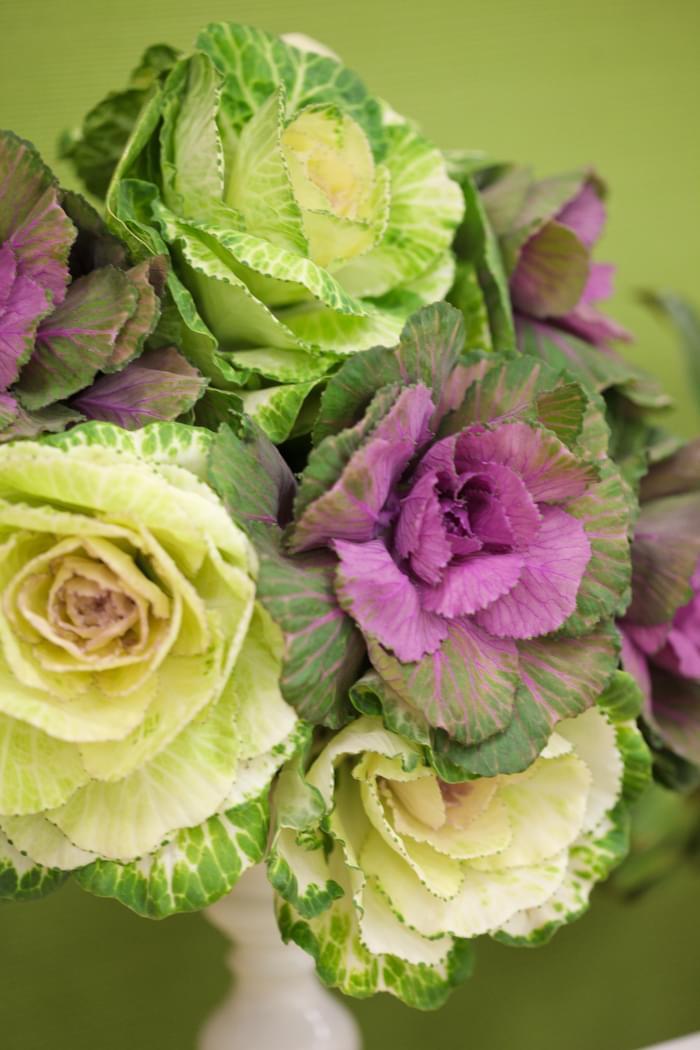 wegetariańskie wesele dekoracje