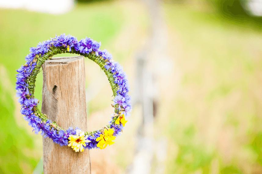 wianek-z-kwiatow-chabrow-slubny-zdjecie-siwko