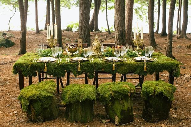 ślub w lesie zdjęcia