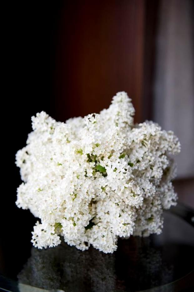 Bukiet ślubny z białego bzu / źródło: bridesinbloom.com.au